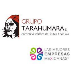 grupo-tarahumara
